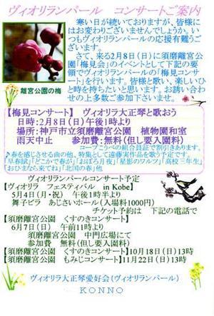 090208rikyuume001